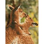 Kit tableau Strass Diamond Dotz Calin de kangourous