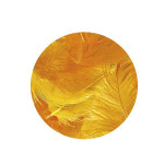 Plume décorative 3-10cm sachet de 10 assorties - Jaune