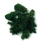 Mousse d'Islande verte foncée 30 g