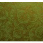 Papier Lokta 50 x 70 cm 150 g/m² Fleurs dorées sur Vert Anis