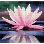 Broderie Diamant kit Squares intermédiaire Reflet de fleur de lotus + cadre